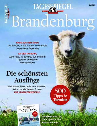 Tagesspiegel Brandenburg - ePaper;