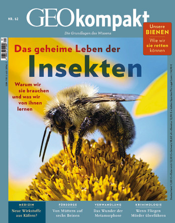 GEOkompakt - ePaper;