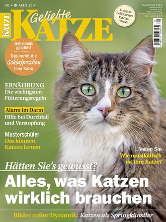 Geliebte Katze - ePaper;
