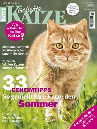 Geliebte Katze