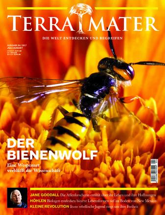 Terra Mater - ePaper;